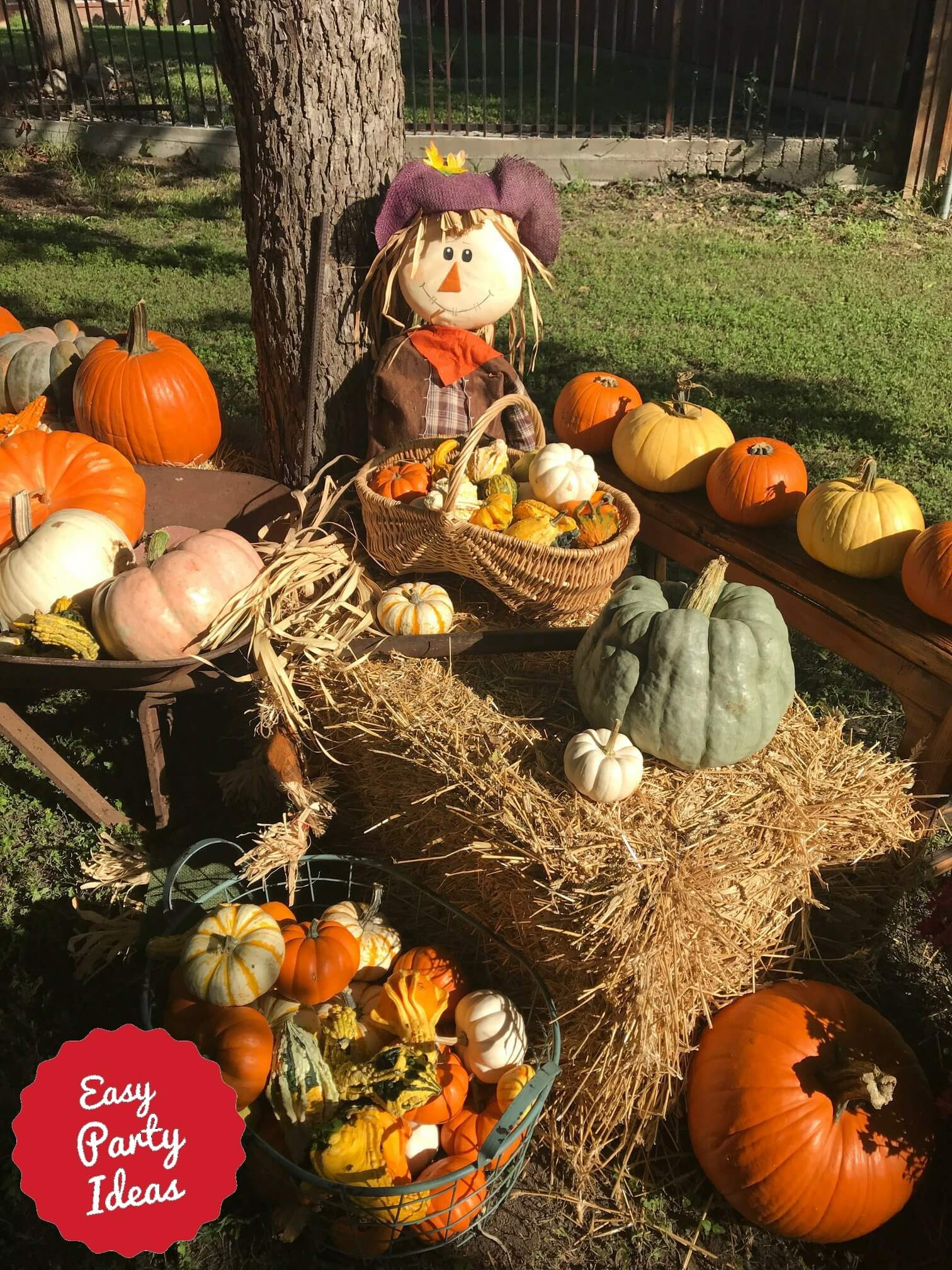 Fall Scarecrow Photo Background or Photo Booth