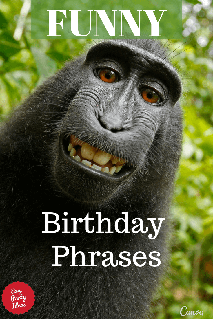 Funny Birthday Phrases