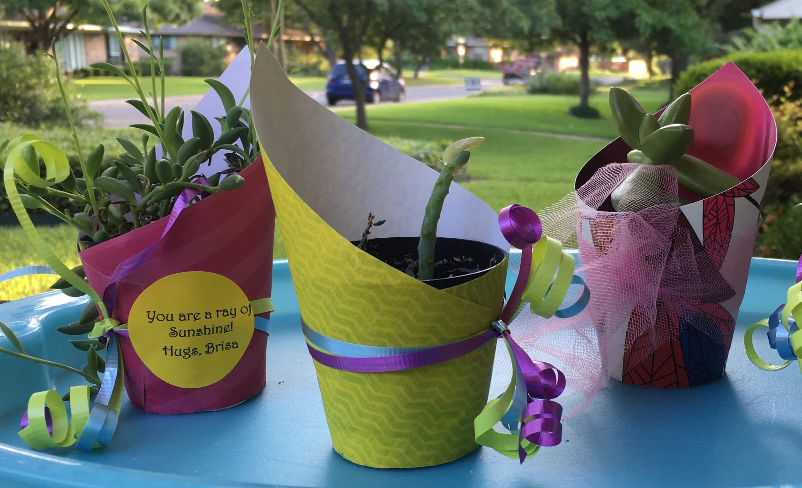 Plant Party Favor